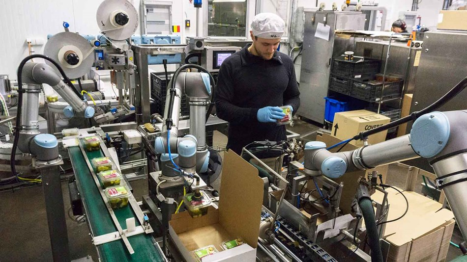 Robotics in food and agriculture industries | collaborative