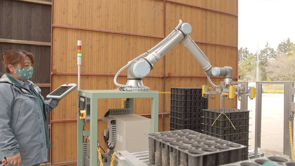 robots in forestry industry